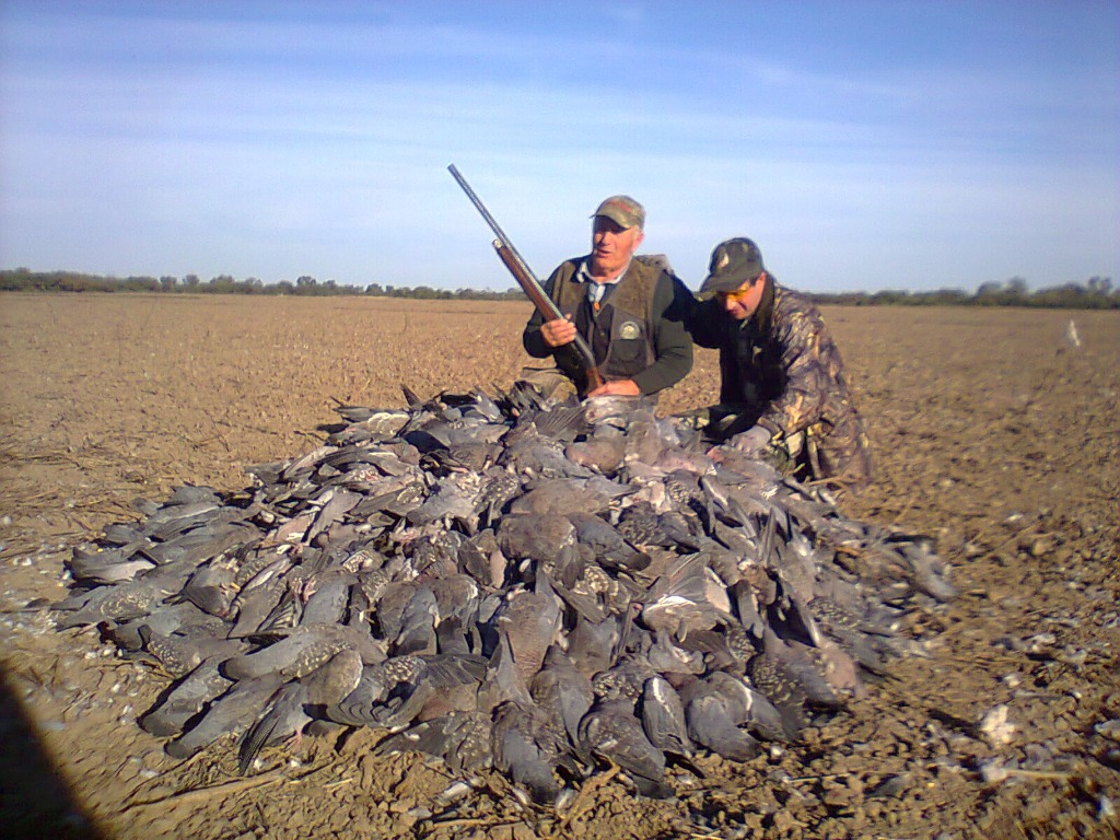 Once Driven Reviews >> L & S Hunting Co., Argentina - Partridge, Duck   GunsOnPegs